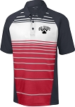 College Lane® Dry Zone® Sublimated Stripe Polo